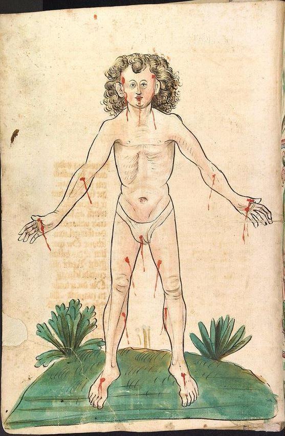 Konrad von Megenberg Das Buch der Natur — Hagenau - Werkstatt Diebold Lauber, um 1442-1448? Cod. Pal. germ. 300 Folio 3v