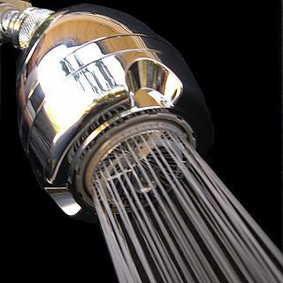 Give a S**t about Nature shower head