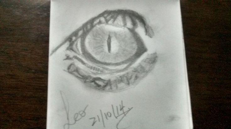Ojo de Reptil