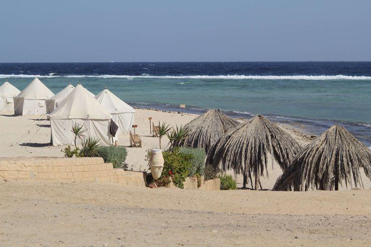 Marsa Shagra - Red Sea Diving Safari - Diving Schools
