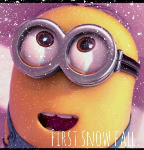 Minions, First snow fall