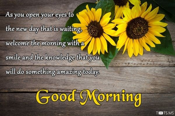 100+ Good Morning Quotes, Wishes and Images