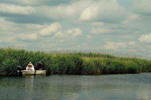 Danube Delta in Romania!