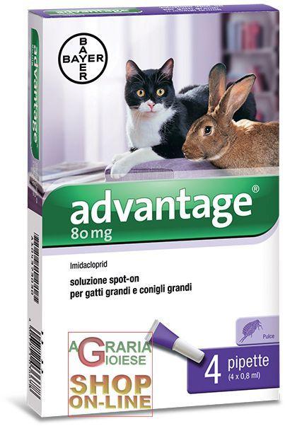 ADVANTAGE 80 PER GATTI E CONIGLI GRANDI 4 PIPPETTE OTRE KG. 4 https://www.chiaradecaria.it/it/antiparassitari-cani-e-gatti/23114-advantage-80-per-gatti-e-conigli-grandi-4-pippette-otre-kg-4-4007221036678.html