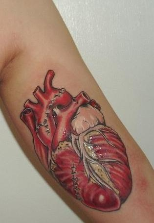 Anatomical heart tattoo by street anatomy  My son wants a chest piece with an heart like this being attacked by ravens a la Poe