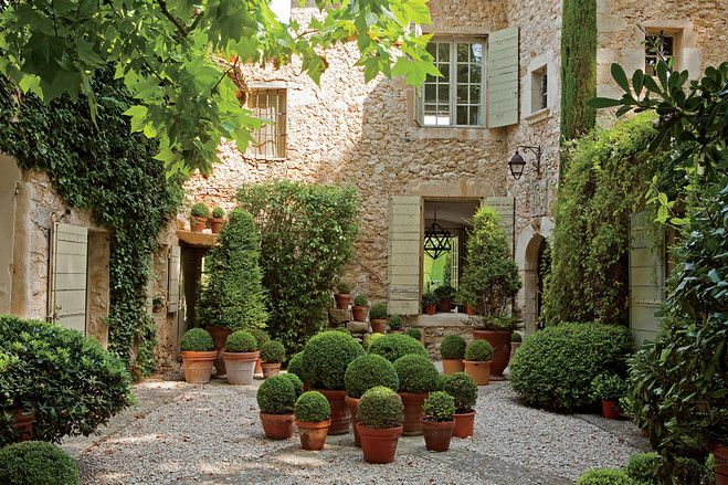 potted evergreens for patio: Plants Can, Gardens Ideas, Courtyards Gardens, Houses, Outdoor, Court Yard, Landscape, Clay Pots, French Style