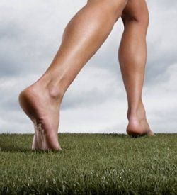 Why is it commonly believed that humans, out of all the species inhabiting this planet, have feet that are somehow so uniquely inadequate and...