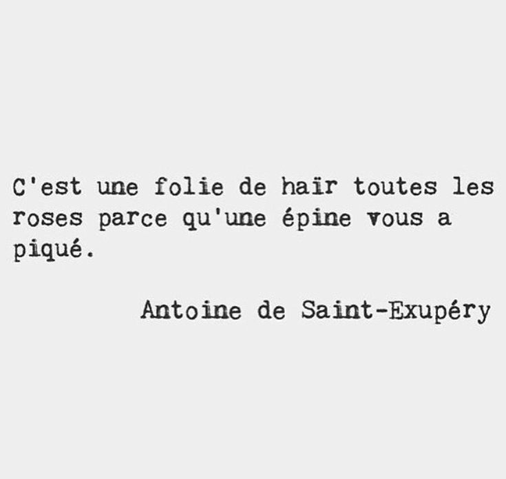 #SaintExupery #douleur #rose