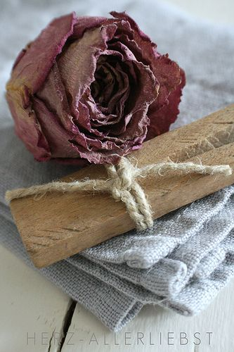 Dried Rose - Ana Rosa  #dried flowers