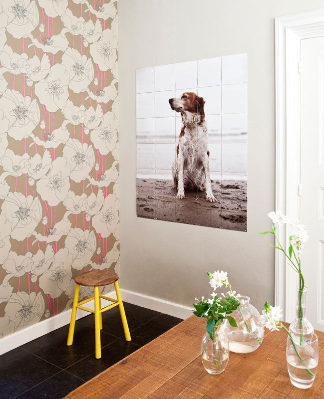 IXXI wall decoration made with a picture of dog at the beach. Create your own, prices from $44.75 #ixxi #ixxidesign