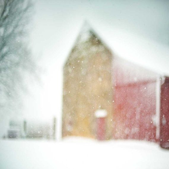 Early Snow ~ photography by Carl Christensen