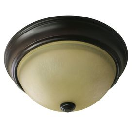 Project Source 2-Pack 13-in W Bronze Ceiling Flush Mount                  closet lights?