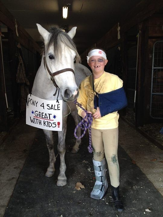 awesome horse costumes