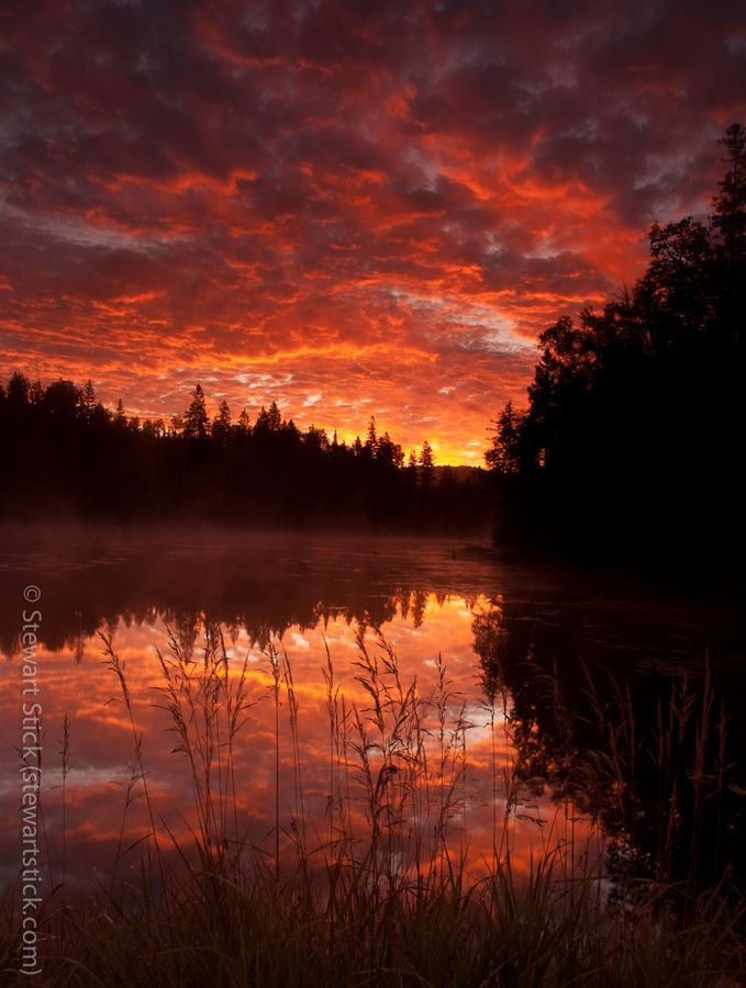 Sunrise near Algonquin Park - I REMEMBER THIS PLACE  Canoe trip in high school, tromping through the portages grumbling the whole time.