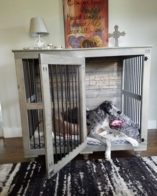 My spoiled puppy-dog would love this!                                                                                                                                                                                 More