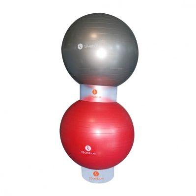 Id 233 E Rangement Swiss Ball Crossfit Pinterest Idee