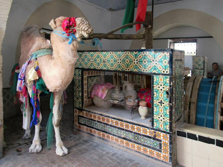 A camel in Kairouan, Tunisia, does endless loops drawing water at Bir Barrouta (1690), a well said to be linked to Mecca. In the 17th century the bey Mohammed Ben Murad had his residence here.