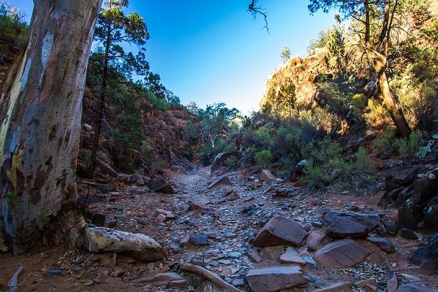 Sacred Canyon Flinders Ranges [Explored] by Jacqui Barker, via Flickr