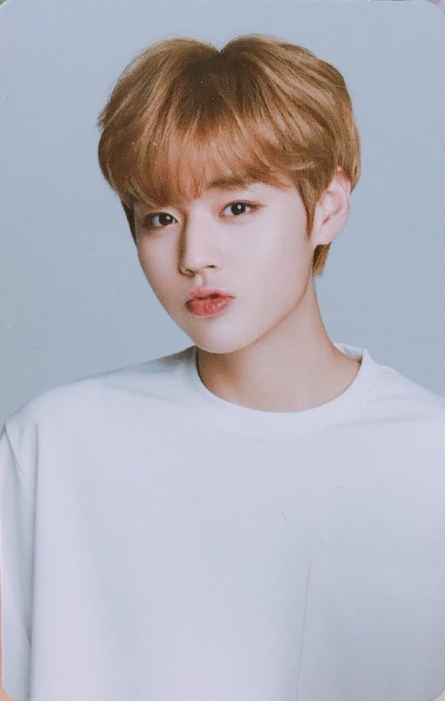 1118 Best Park Ji Hoon 박지훈 Images On Pinterest Park