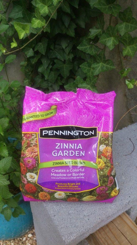 Zinnia Garden  ||  Biscuits & Burlap                                                                                                                                                                                 More