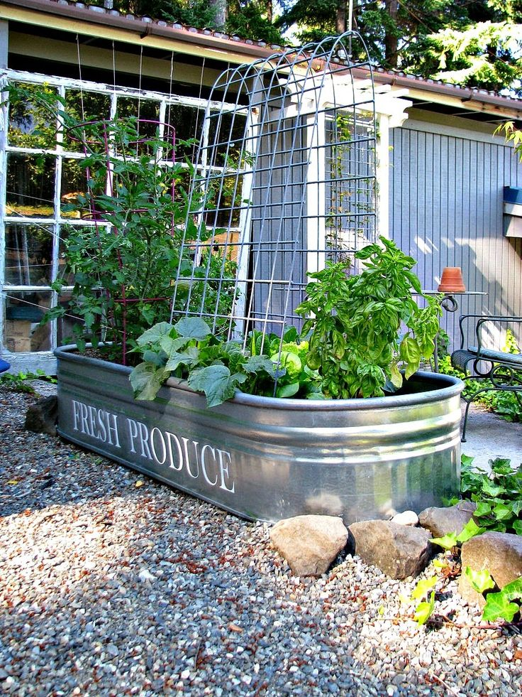 Cute idea for container garden...blue roof cabin: A Manageable Veggie Garden