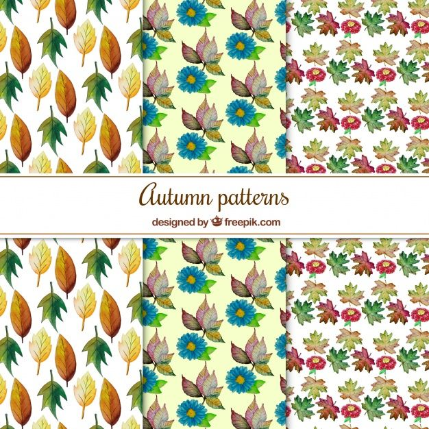 Free vector Lovely pack of watercolor autumnal pattern #22551