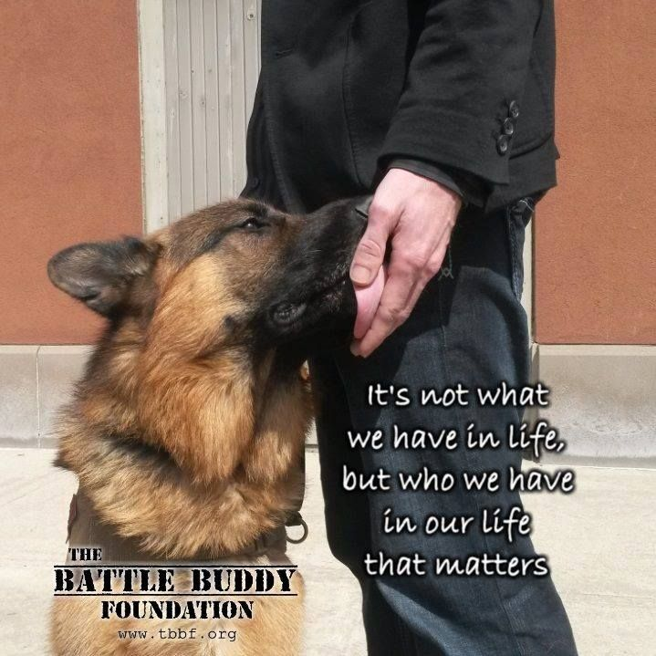 Battle Buddy ·     Service Dogs Save Lives  A 'battle buddy' service dog is so much more than just a service dog for a disabled veteran --they not only increases the quality of their handler's lives on a daily basis, and allow them to decrease the intake of the harmful medications. They are also a beacon of hope for so many others struggling with Post Traumatic Stress and invisible wounds