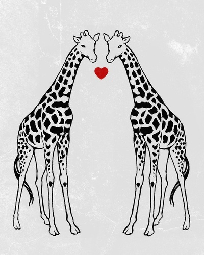 Giraffes ...........click here to find out more http://googydog.com