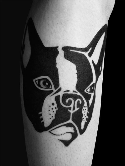 benvolt-blackwork-tattoos-2spirit-tattoo-sanfrancisco/Boston Terrier