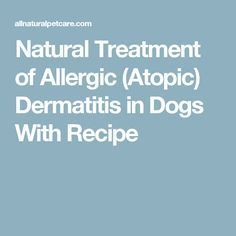 Natural Cures For Dermatitis In Dogs