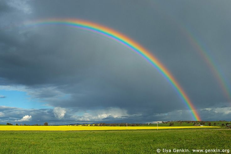 Double Rainbows over a Field of Canola, Wellington, central NSW, Australia.