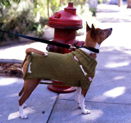 162 best DIY Pet Projects: Dogs images on Pinterest | Dog, Dog ...