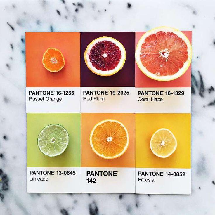 Pantone Food – Transformer les aliments en couleurs Pantone appétissantes (image)