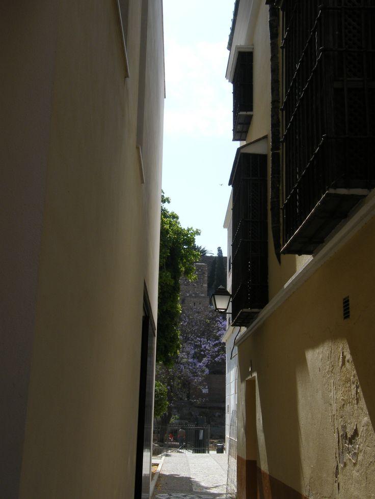 Alcazaba desde Museo Picasso