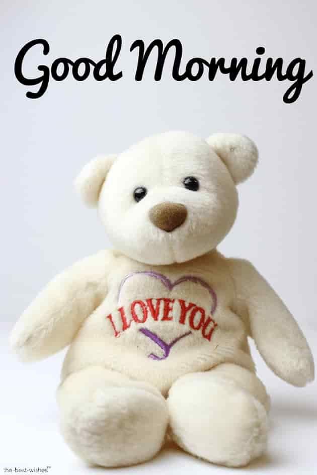 Good Morning With A Teddy Bear I Love You Good Morning Boo Bear