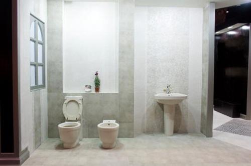 41 Best To Bidet Or Not To Bidet Images On Pinterest Bathroom Half Bathrooms And Modern