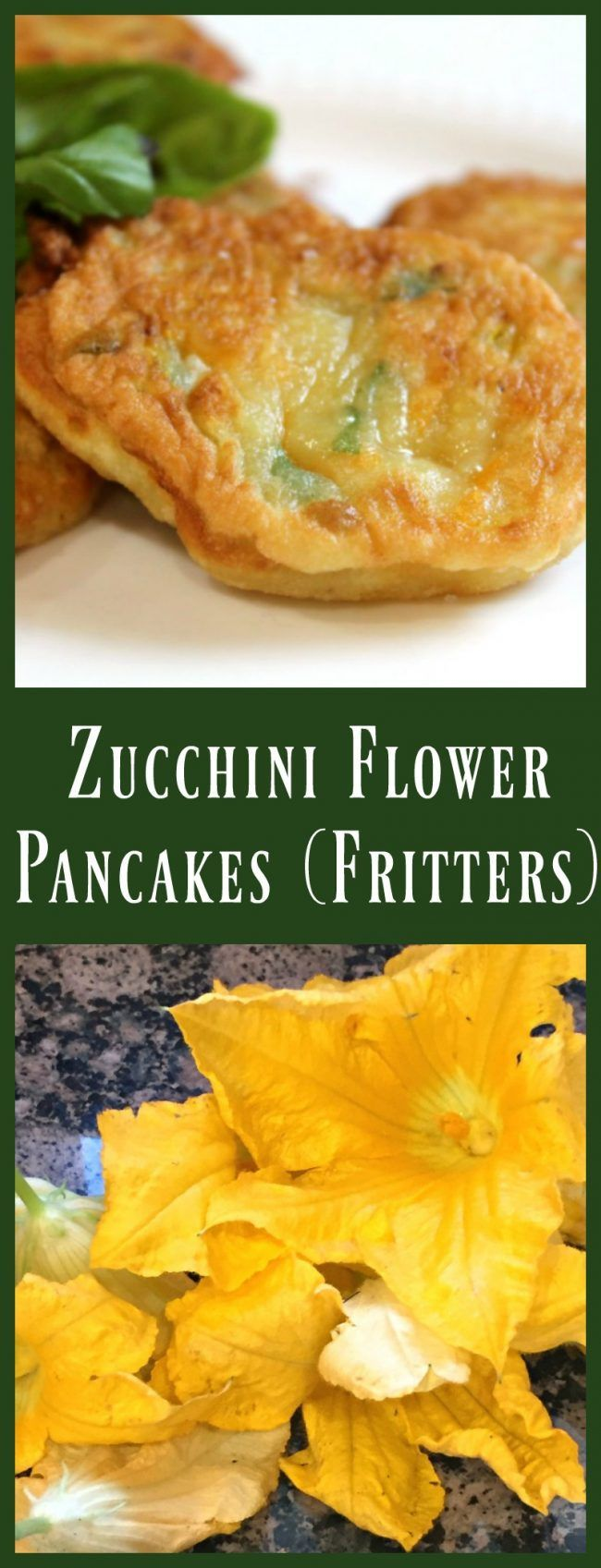 ZUCCHINI FLOWER (BLOSSOM) PANCAKES!  - Did you know that you can eat the flowers from a zucchini plant?  Well you can AND you should!  This recipe is a take on one of my favorite things my Italian grandmother used to cook up for us as soon as the garden was in full swing!  Don't have a garden?  Just grab the blossoms at your farmer's market!