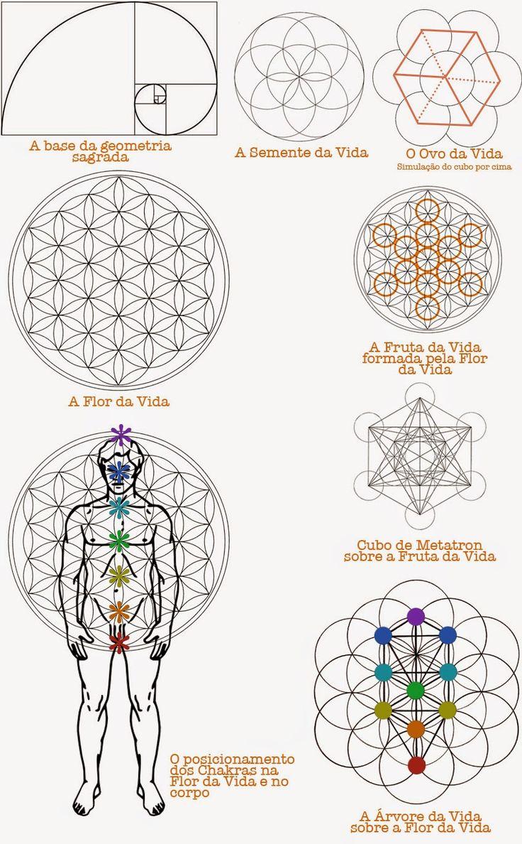 tree of life four worlds elements lighting manifestation - Pesquisa Google