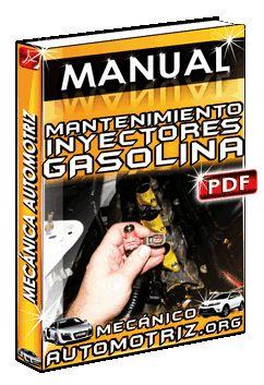 Descargar Manual de Mantenimiento de Inyectores de Gasolina