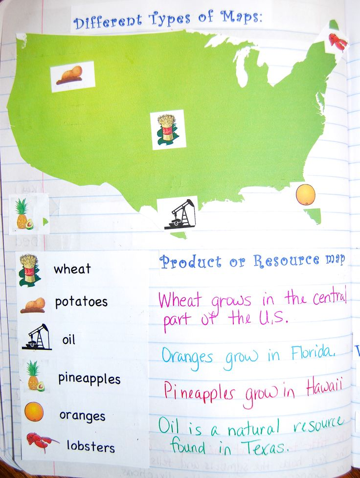 Different types of maps in Geography Interactive notebook! $