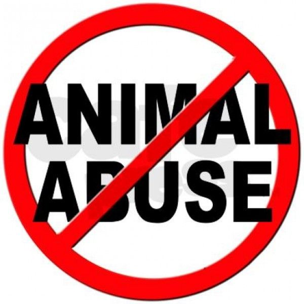 Ban Pro Animal Abuse Pages From Facebook   YouSignAnimals.org