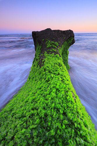 Seseh Beach, Canggu, Bali