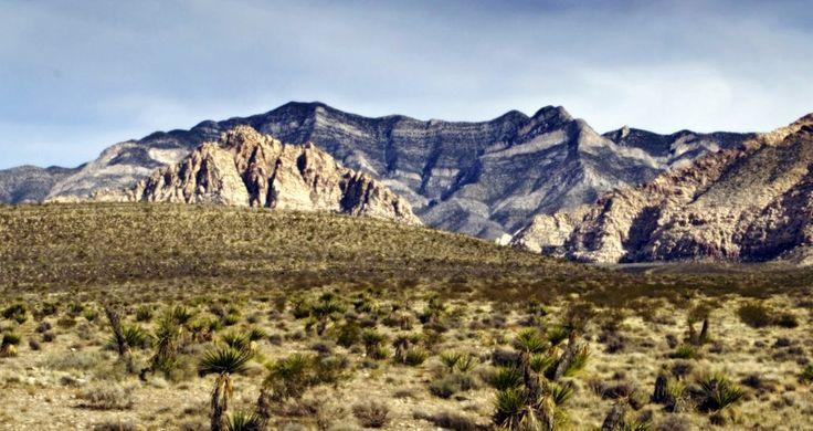 Nevada:  Experienced #horse #caretaker needed in #Nevada.