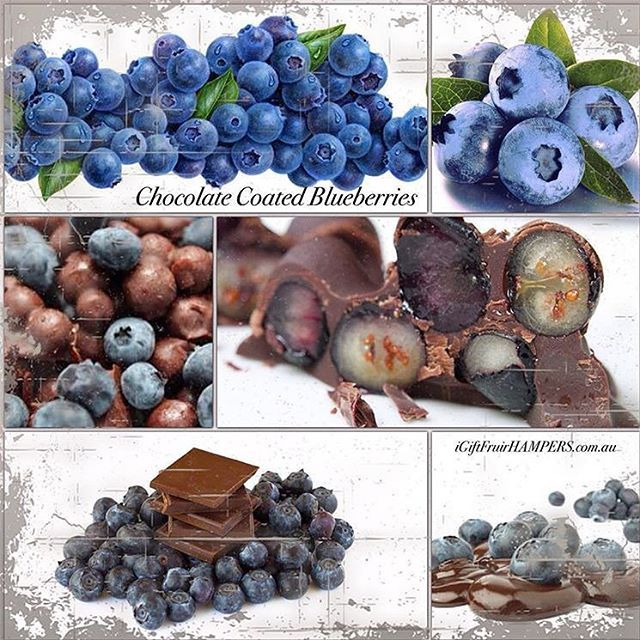 Chocolate Coated Blueberries! It's Blueberry season and the news is it's a good start to the season!  Tag someone you would share these with! #blueberries #blueberry #fruit #love #chocolate #fruithampers #fruitporn #fruitbaskets #fruitbasket #basket #australia #sydney #melbourne #goldcoast #canberra #brisbane #healthy #luxury #luxurygifts #corporategifts #corporatehampers
