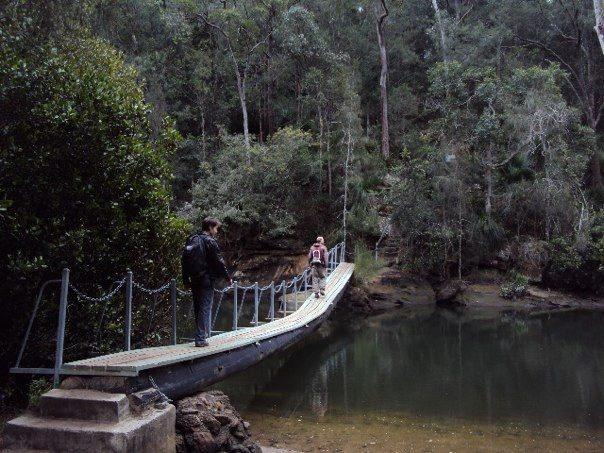 Mount Ku-Ring-Gai to Berowra - Day Hike