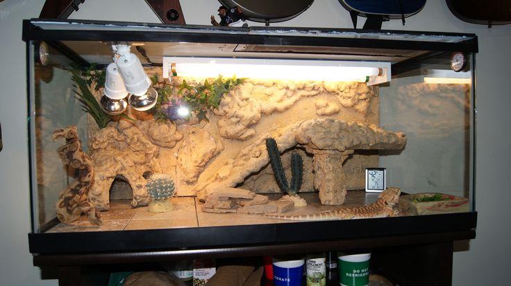 bearded dragon habitat | Bearded Dragon . org • View topic - Finally Building my own Viv ...