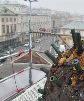 Zobacz Warszawę z perspektywy daktyla. http://tvnwarszawa.tvn24.pl/informacje,news,zobacz-warszawe-z-perspektywy-daktyla,187950.html