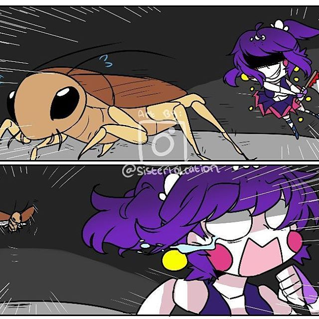 Roach-Kun use fly ! Super effective • check my art acc @bluemild ⚠❌Do not Copying,Tracing,Stealing,Edit and Remove my watermark!! This is my hardwork so please appreciate it !! ❌⚠ Repost are 100% allowed,u dont need to give a credit but i appreciate it alot if u do • YouTube : LazyAnimation23 Fnaf Amino : Sisterlolcation SL Amino : Sisterlolcation Deviantart : Chocoumild [[Tags]] #fnaf #fnaf2 #fnaf3 #fnaf4 #fnafworld #fnafsisterlocation #sisterlocation #baby #ballora #funtimefox...