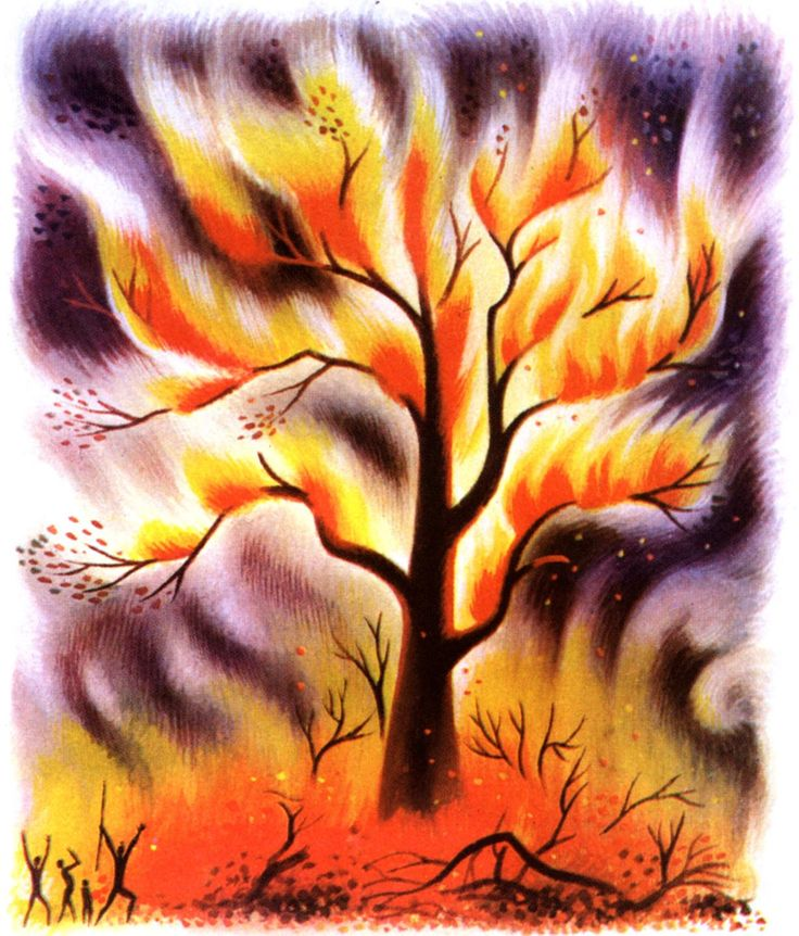 Tree on fire drawing