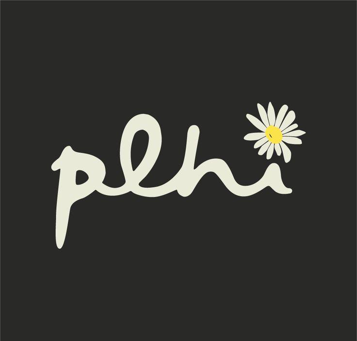 #plhi #daisy